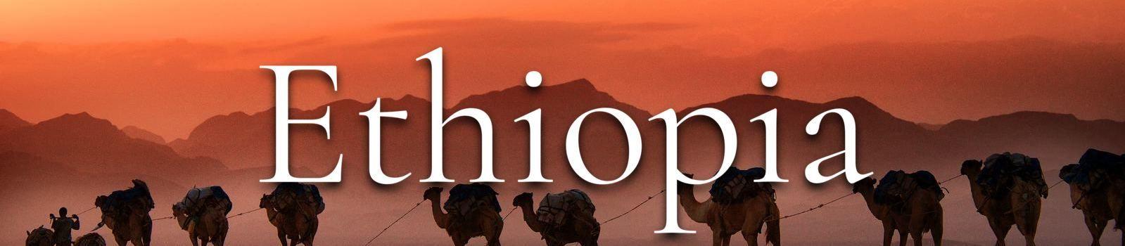 Ethiopia Banner