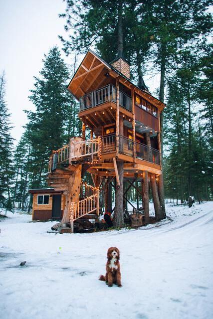 Baumhaus Winterurlaub