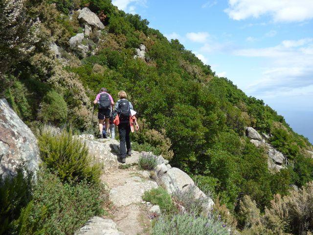 Wandern in Elba an der Küste