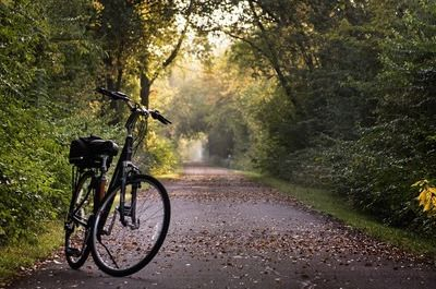 Olanda Bicicletta