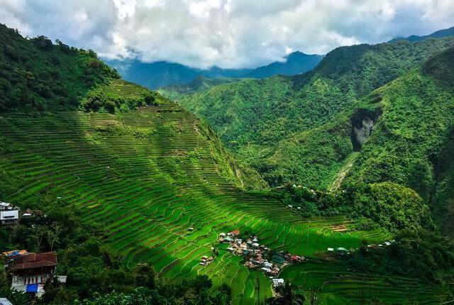 Terrazze di riso Banaue