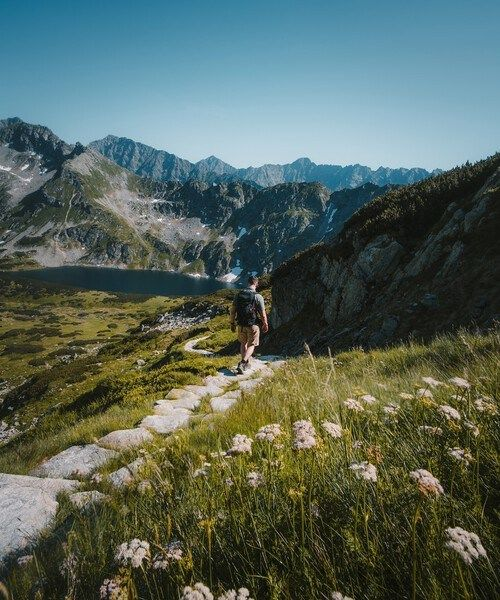 Path through lush mountains