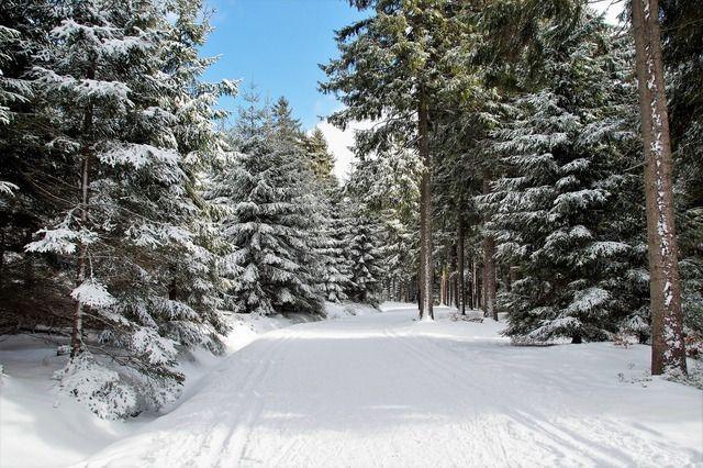 Skiurlaub Winterlandschaft