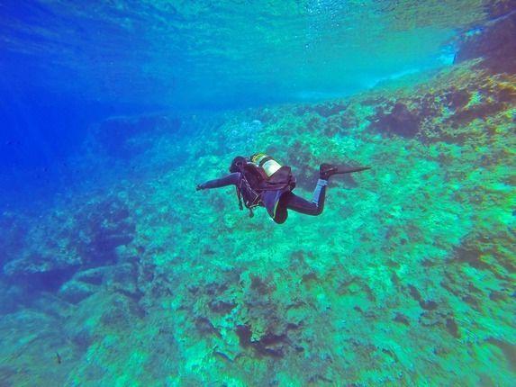 Tauchen Korallenriff