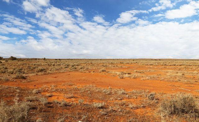 Wüste Australien