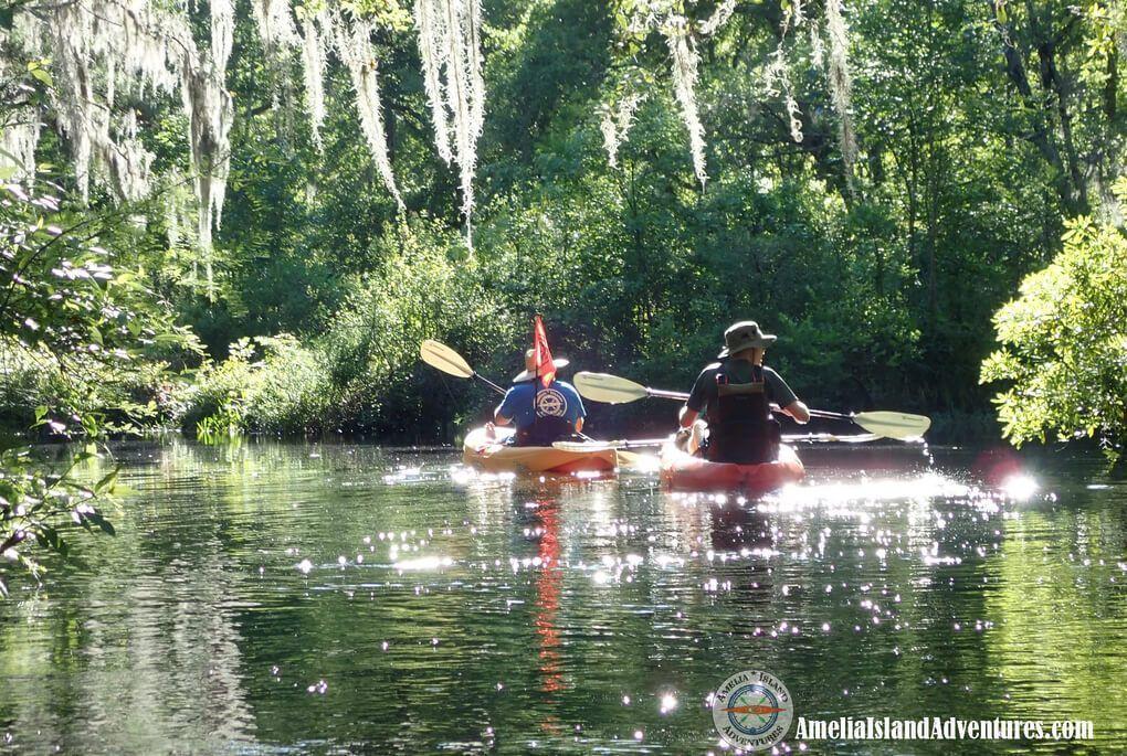 What to Do in Amelia Island - Kayak Tour
