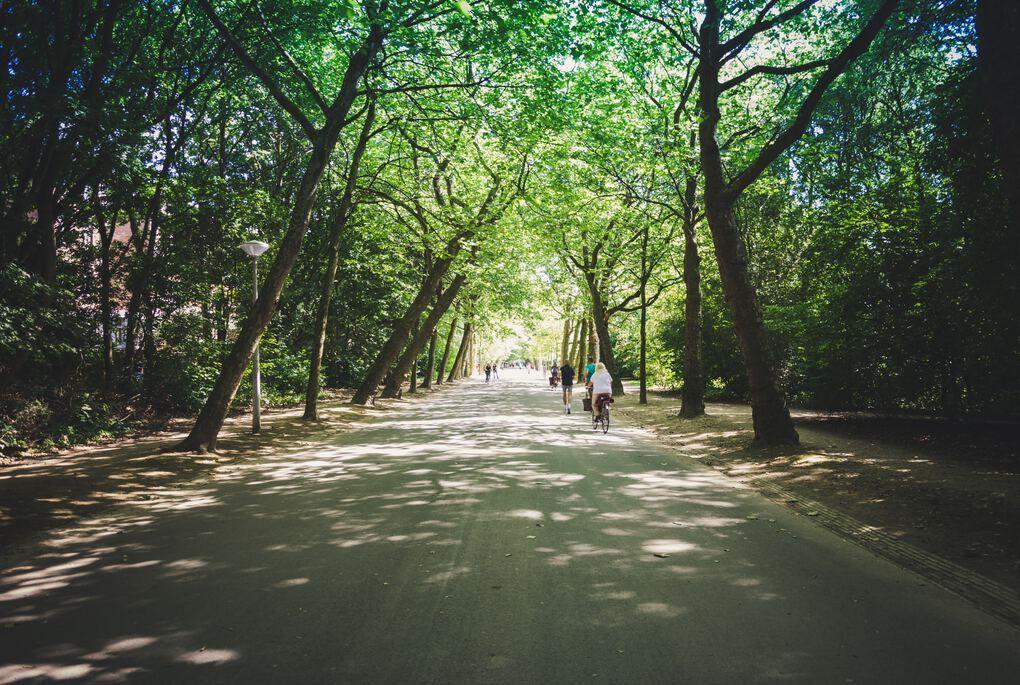 Amsterdam Visitare il parco Vondelpark