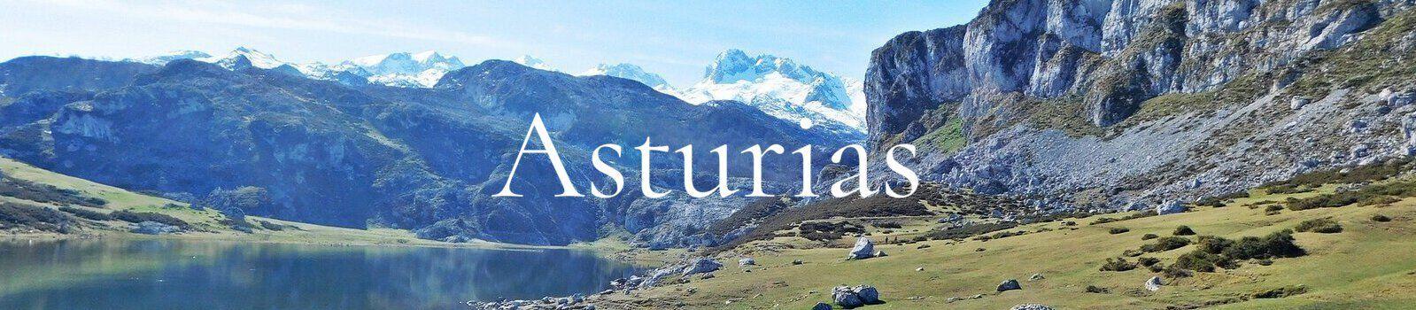 Asturias Banner