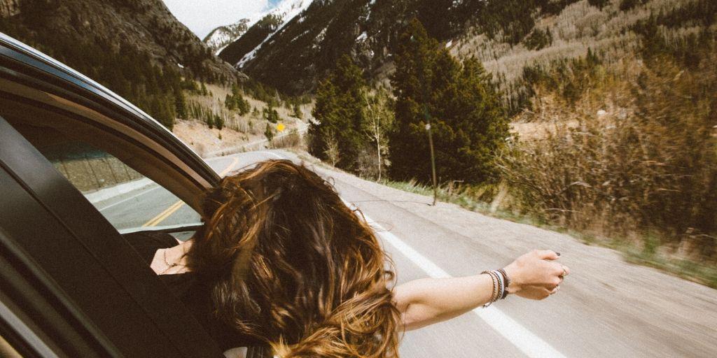 auckland-road-trip