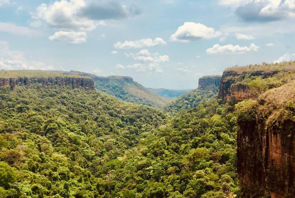 Flat topped mountains towering over lush green valley in Chapada Diamantina National Park