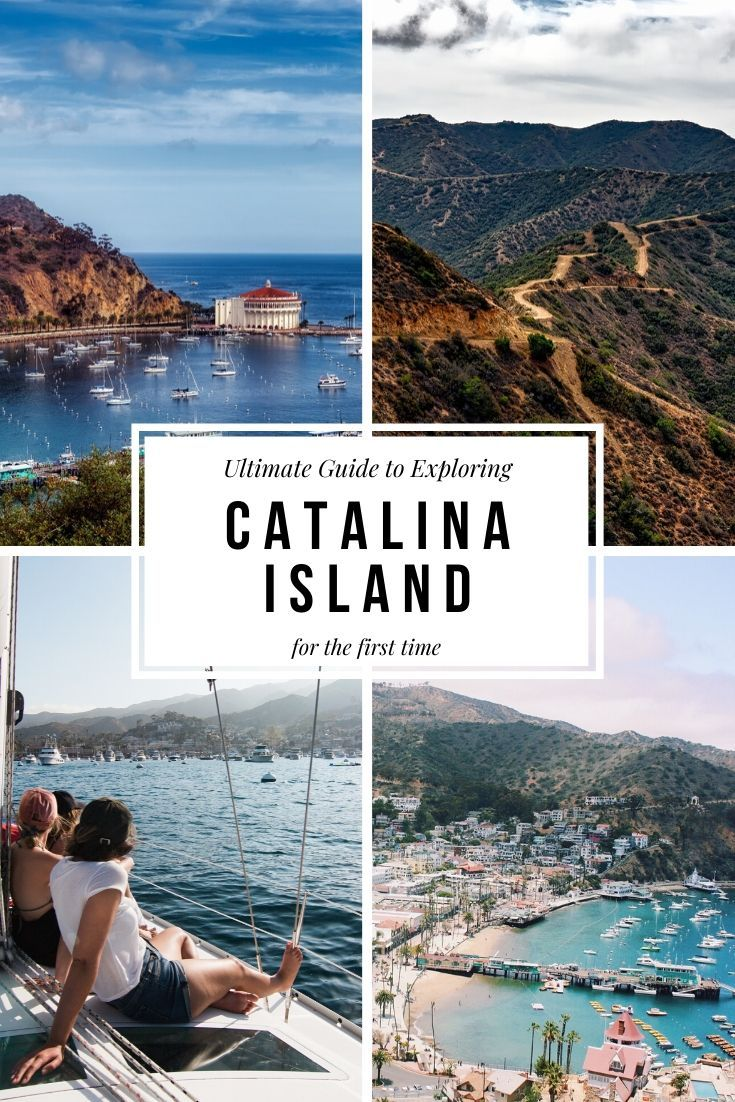 Ultimate Guide to Catalina Island pinterest cover photo