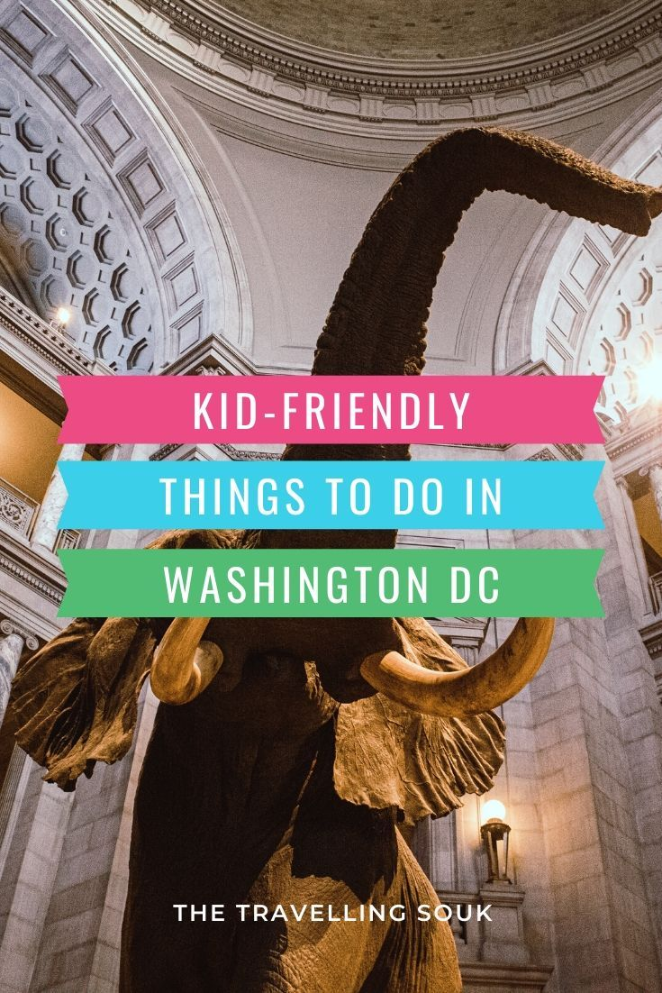 Kid Friendly Things to Do in Washington DC