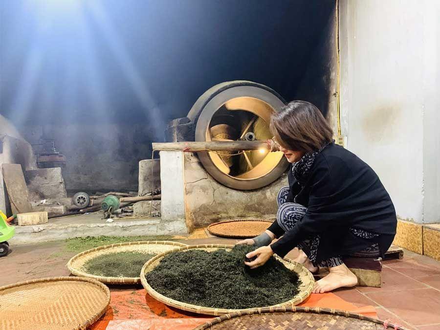 Fabrication artisanale du thé vert de tan cuong