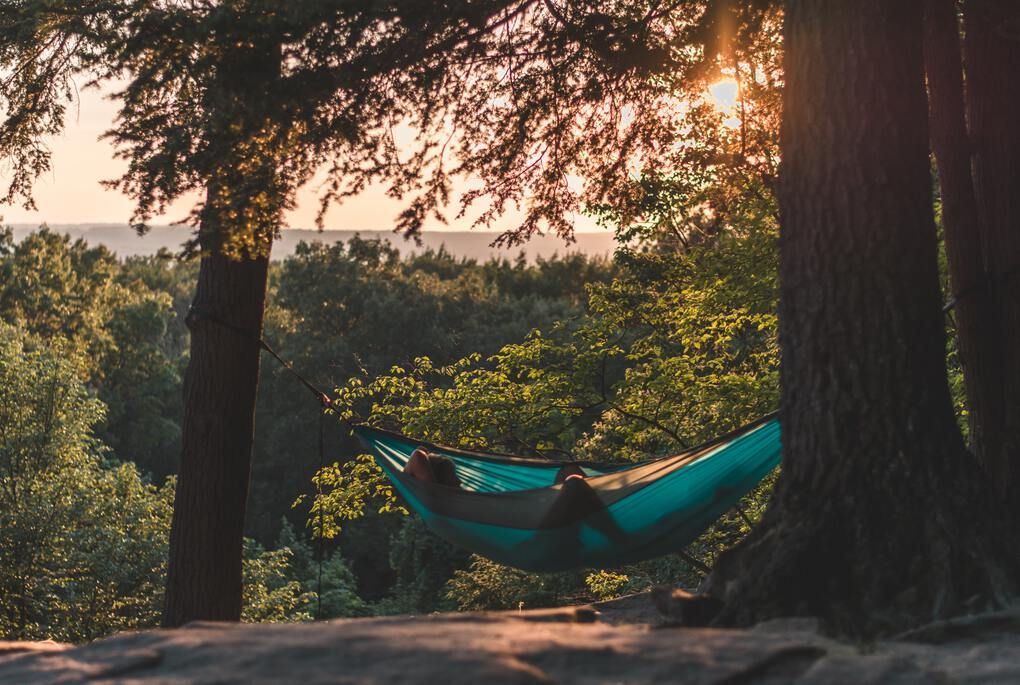 person lying in a hammock between trees during the daytime