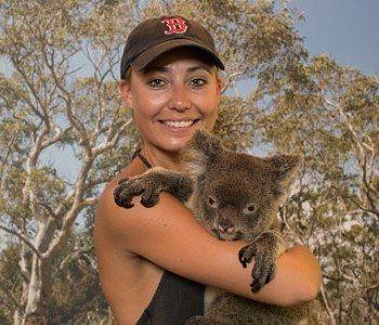 hartley's crocodile adventures hold a koala