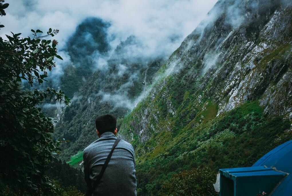 Man sitting above valley of flowers in lush green mountains