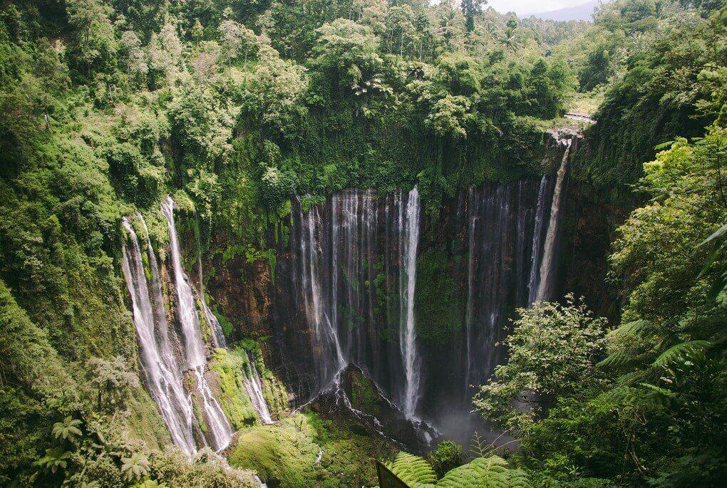 Green landscape with Tumpak Sewu waterfall in Java Indonesia