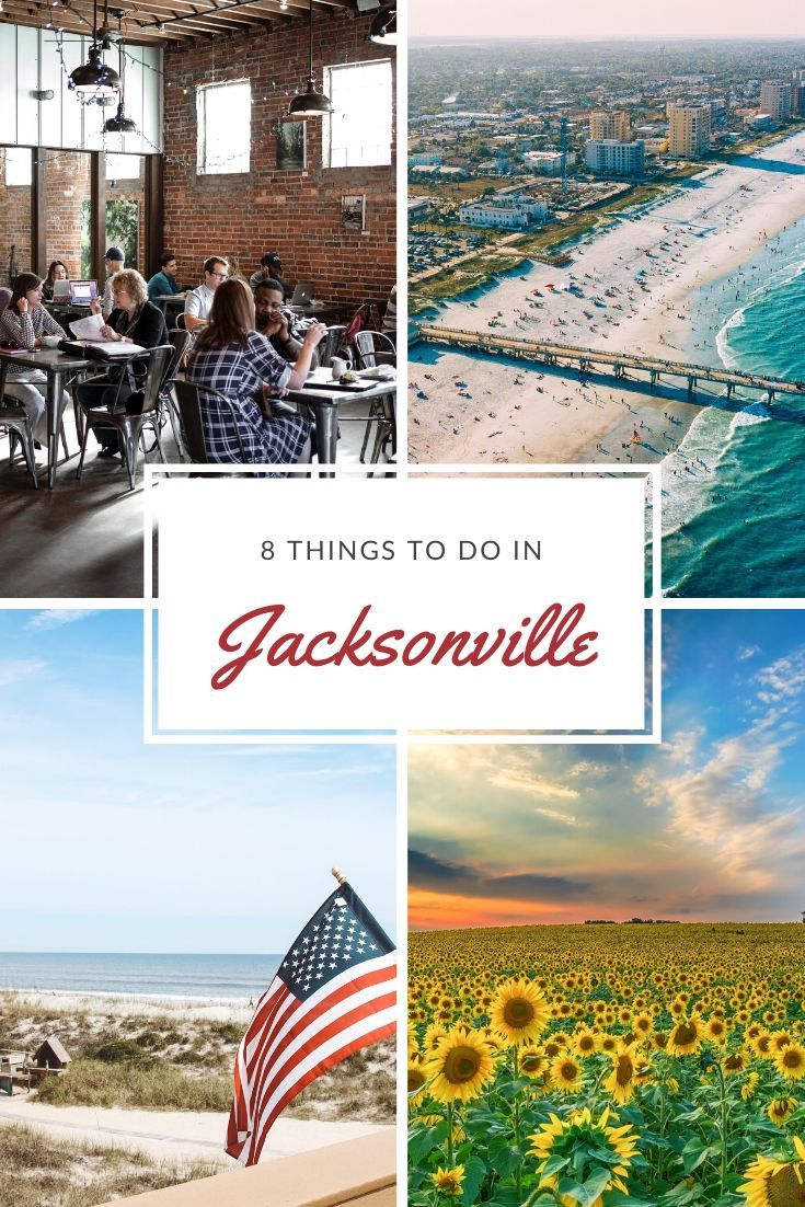8 Things to Do in Jacksonville