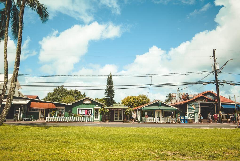 Beachside homes in Kauai