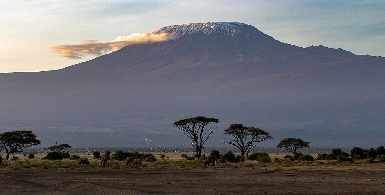Kilimandjaro Ete