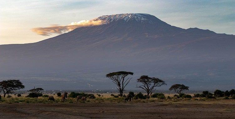 Kilimanjaro inverno