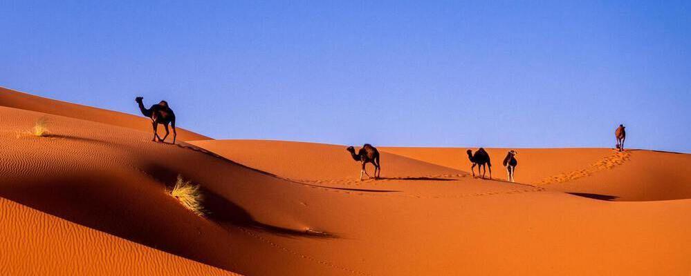 marocco a settembre