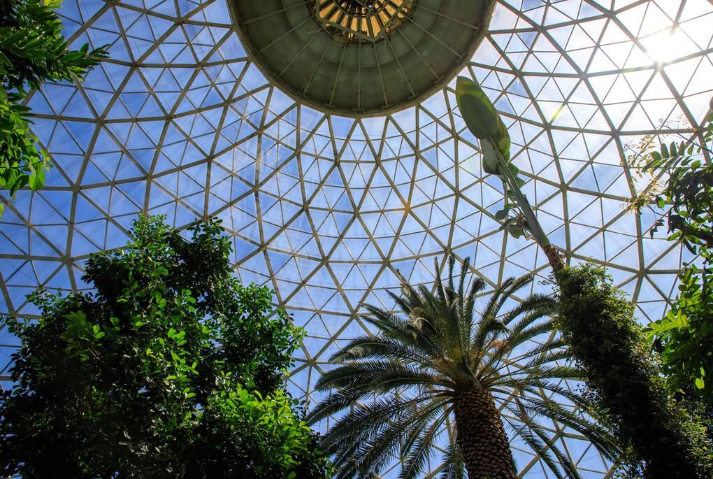 Looking up at the Milwaukee Domes Conservatory