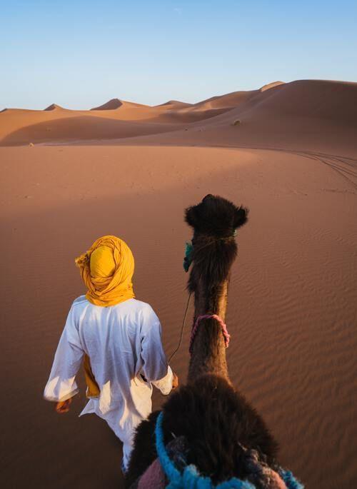 Man walking camel in Morocco desert