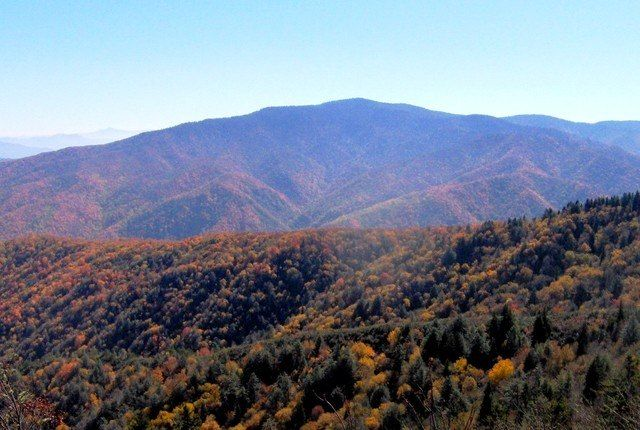 Mount Cammerer Lookout