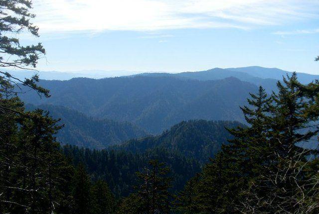 Mounte Leconte View