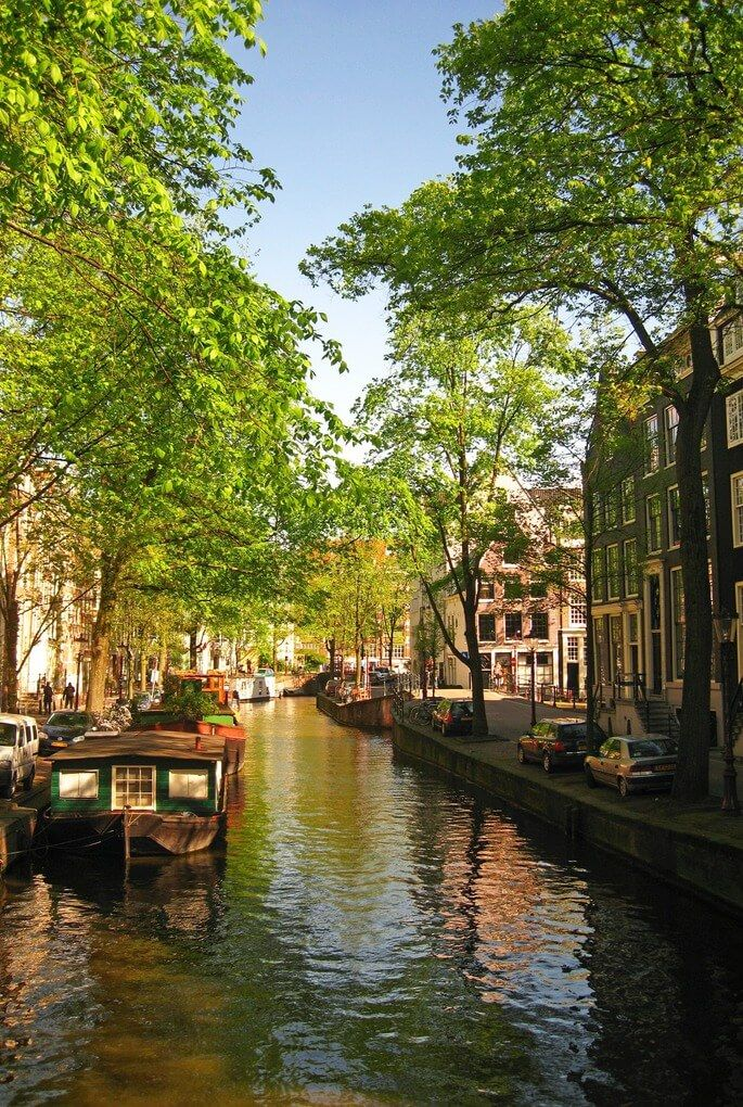 What to Do in The Netherlands
