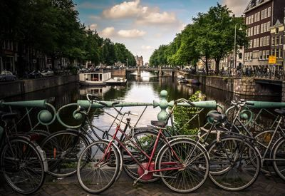 The Netherlands 3