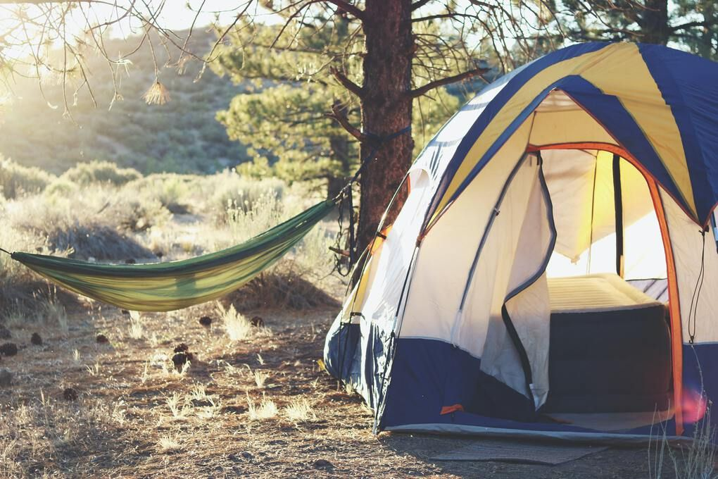 Tent and hammock in the wilderness