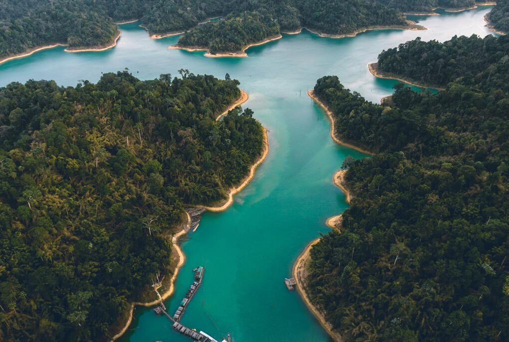 Aerial view of turquoise river through green trees in Cheow Lan Lake
