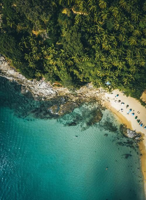 Aerial view of beach with lush rainforest