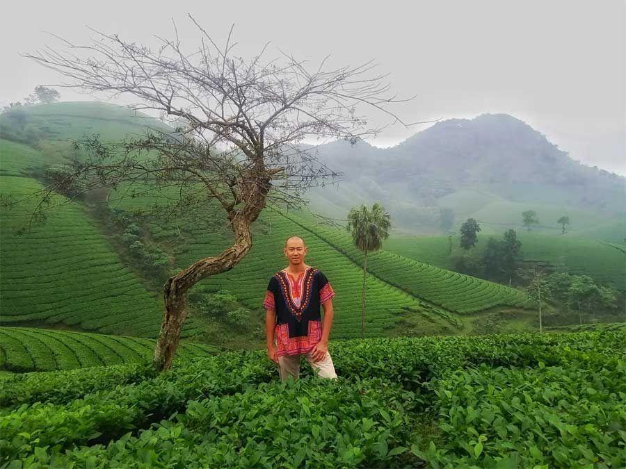 The vert colline de long coc
