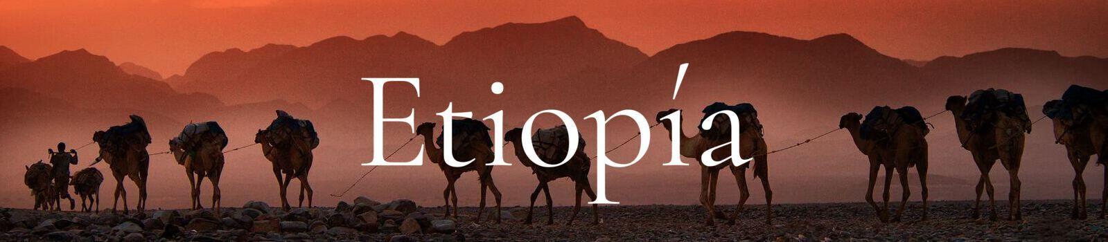 etiopia banner