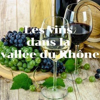 Quels vins ramener vallée Rhône