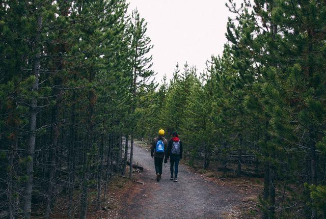 Yellowstone National Park Hiking